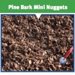 Pine Bark Mini Nuggets - Seaside Mulch - Soil, Compost, Stone