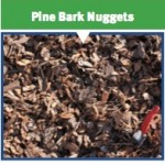 Pine Bark Nuggets - Seaside Mulch - Soil, Compost, Stone