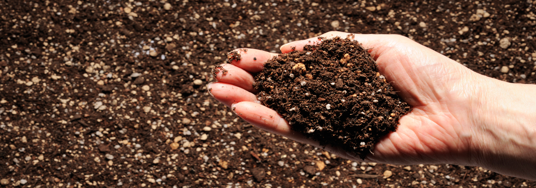Landscape Soil Seaside Mulch - Soil, Compost, Stone